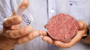 Allo studio la carne in provetta, la cosiddetta carne pulita che elimina i megallevamenti
