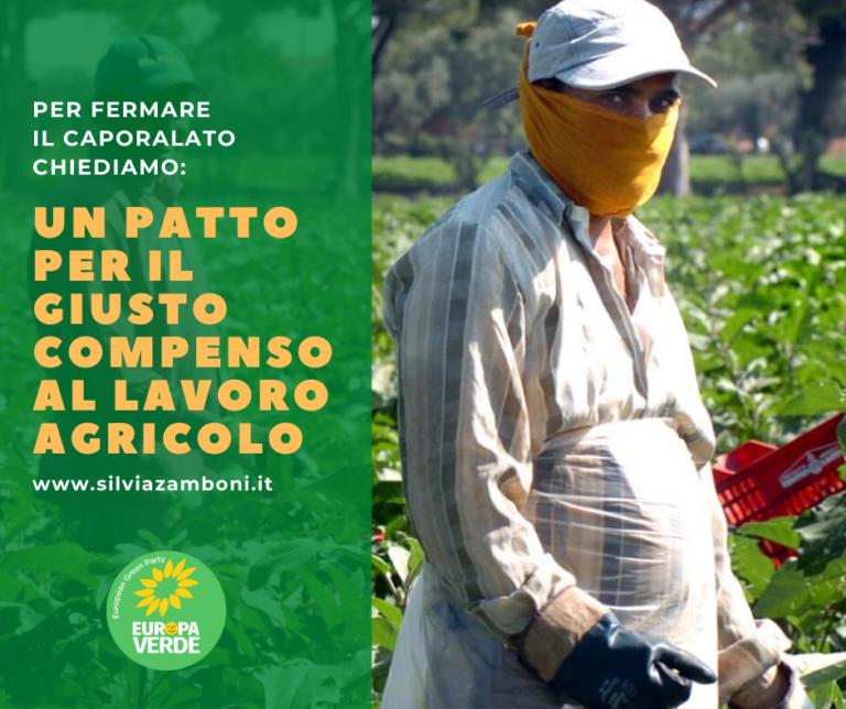 Le proposte di Europa Verde Emilia-Romagna per fermare il caporalato