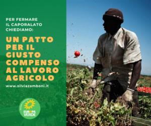 Caporalato. La Giunta dell'Emilia-Romagna promuova un Patto per il giusto compenso al lavoro agricolo coinvolgendo le forze economiche e sociali della filiera