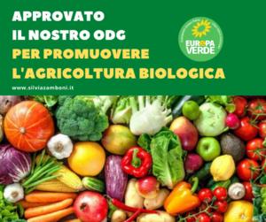 APPROVATO IL NOSTRO ODG PER PROMUOVERE L'AGRICOLTURA BIOLOGICA