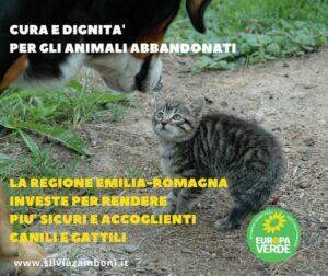 CURA E DIGNITÀ PER GLI ANIMALI ABBANDONATI