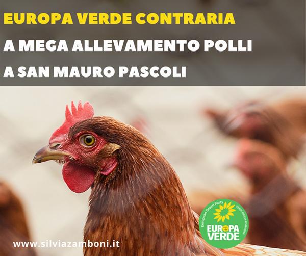 STOP AL MEGA ALLEVAMENTO POLLI A SAN MAURO PASCOLI