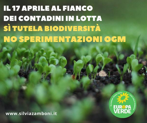 Sì TUTELA BIODIVERSITA' NO SPERIMENTAZIONI OGM
