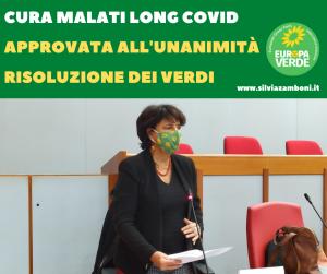 Cura dei malati long Covid. Approvata all'unanimità la risoluzione dei Verdi